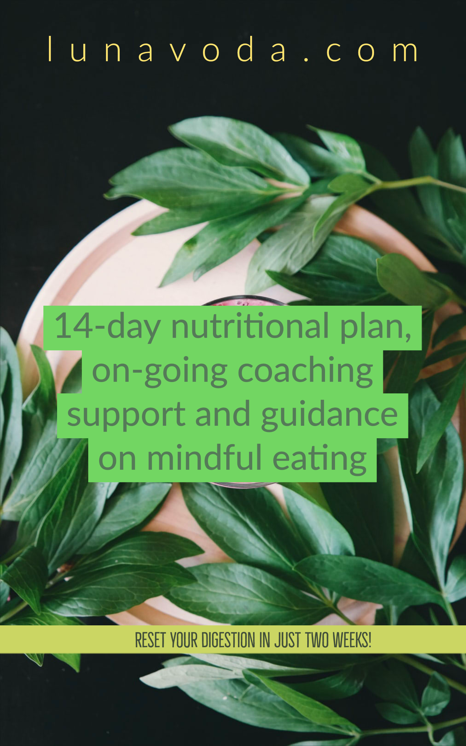 Reset Your Taste Buds With The 14-day cleanse protocol + 2 Coaching Calls and On-going Support